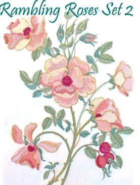 Раскидистые розы Набор 2